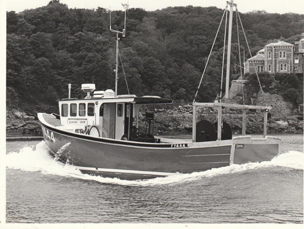 Danvic FY 444