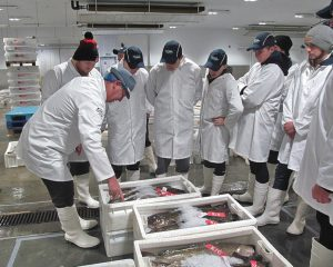 … on a recent visit to Peterhead fishmarket.