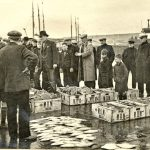 An auction in progress on the fish quay at Buckie.