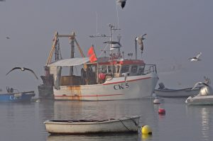 Johnny French manoeuvres Valkyrie II back to the mooring through freezing mist…