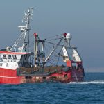 The Brixham scalloper Emulate BM 1 steams past the towing Emma Louise, when returning to Devon after fishing off the Yorkshire coast.