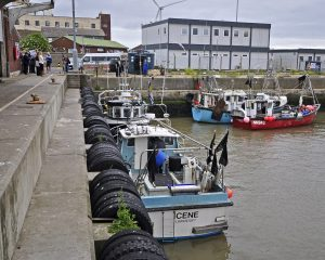 About 15 inshore boats land to Lowestoft market now…