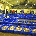 Lowestoft fishmarket on a so-so day in 2015…