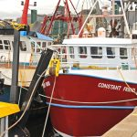 Plymouth is home to a sizeable fleet of day boats and scallopers.