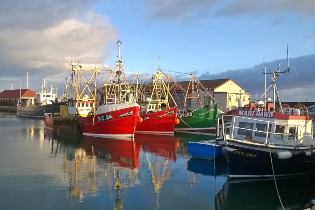 A trio of scallopers – Ubique KY 28, Marigold A 52 and Queensberry BA 156 – on a gorgeous winter's morning in Arbroath harbour. (Stuart Hollingworth)