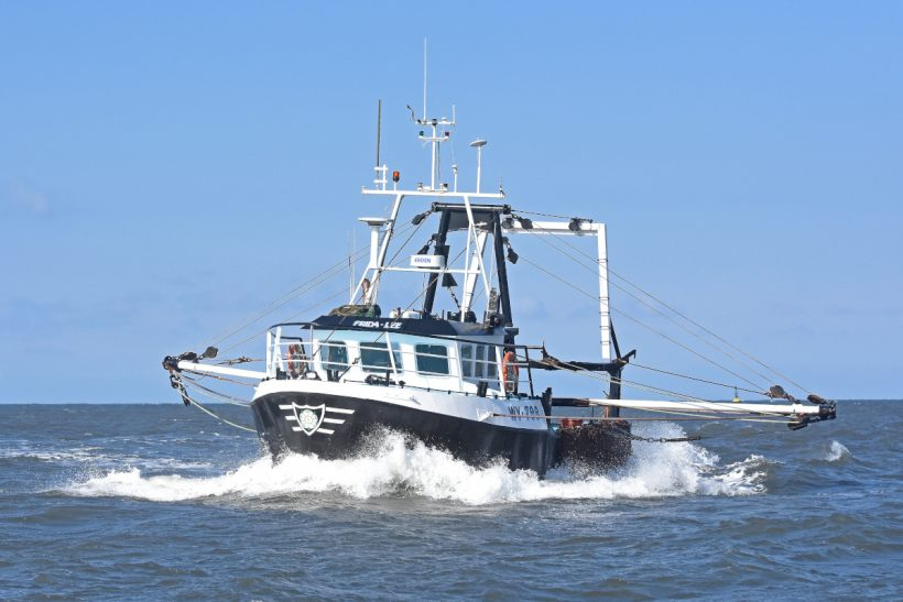 Boat of the Week: Frida-Lee WY 779