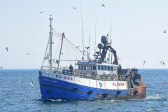 Boat of the Week: Fladda Maid UL 209
