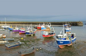 Valentine waits for the tide, moored alongside the local fleet in Folkestone's tidal harbour.