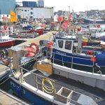 A variety of inshore static-gear boats work from pontoon berths in Port Henry basin in Peterhead harbour.