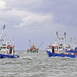 The hand-worked fishery starts on a falling tide, with a bit of prop-washing to reveal the cockles…