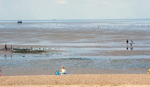 … and the Stubborn Sands off Heacham, which still are.