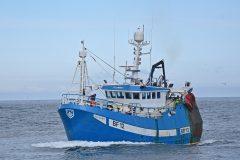 Boat of the Week: Ellorah BF 12
