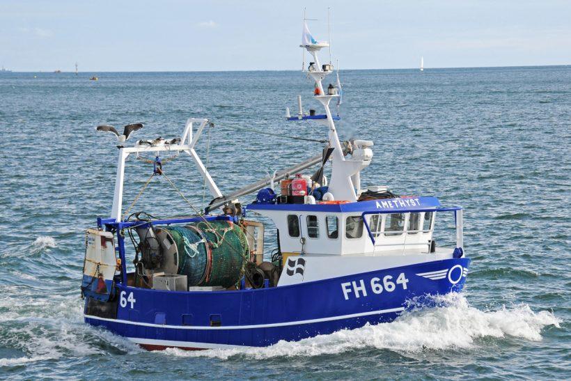 Boat of the Week: Amethyst FH 664