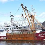 The Eurocutter beam scalloper Eternal Promise was bought by Whitelink Seafoods in 2016.
