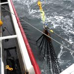 Using the Gilson winch to lower the port dredges into the water.