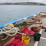 The three dredges are stowed on the starboard side as Rachael Anne makes her way back to Mylor at the end of the day.
