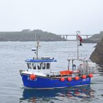 Robert Duthie's K20 Dooniebraes heads out from Boddam into afternoon sea mist.