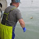 Sling your hook: Johnny French grapples with pot retrieval…