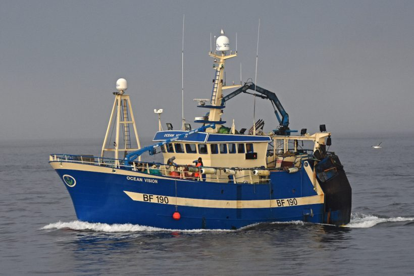 Boat of the Week: Ocean Vision BF 190
