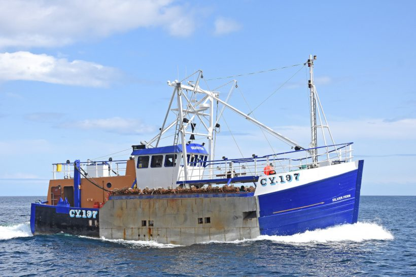 Silver Fern CY 197 – Macduff Shipyards completes rebuilt and reregistered scalloper for Kallin Shellfish