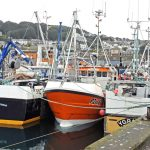 Ring-net boats at Newlyn, ready for the start of the new season, with a bigger allocation of sardines to fish.