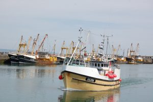 Ygraine preparing for the start of the sardine fishery. (Photo: Ian Murray)