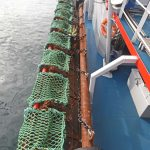 Box-section crutches keep the eight-a-side dredges clear of the main deck.