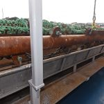 Side reception hoppers and conveyors move the contents of the scallop dredges forward…