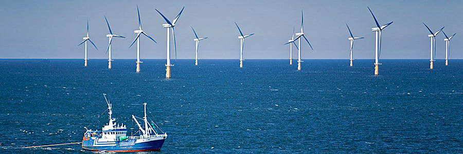 The growth of wind farms is increasingly displacing fishing vessels from traditional grounds and damaging marine life.