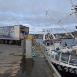 Carvela landing, against the clock, to a vivier lorry at the new pier at Stromness.