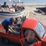 In the early 1990s, traditional wooden crabbers…