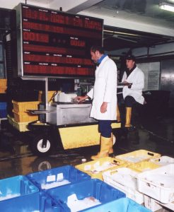 Looe fishmarket – shown in action in 2009 – was one of the first UK markets to choose electronic auctioning.