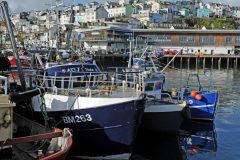 Business is brisk in Brixham following the launch of the web clock auction in June.