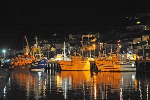 Newlyn harbour at rest.