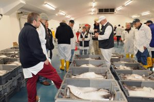 Newlyn has reported steady sales and prices from recent markets.
