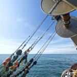 … the twin-rig trawls…