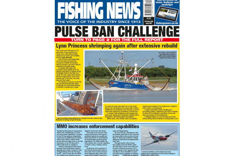 New Issue: Fishing News 31.10.19
