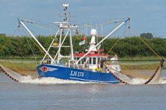 The restored Lynn Princess LN 175, back to shrimping in September.