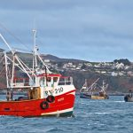 The Manx scallopers Aoife Rose, Maureen Patricia and Coral Strand towing in Port St Mary Bay.
