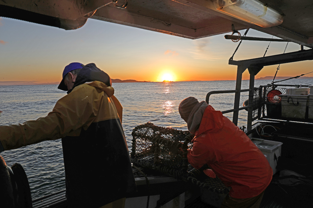 Hauling creels onboard Intrepid UL 56 in the Minch as the winter sun rises over the Shiant Islands. (Gordon Macrae)