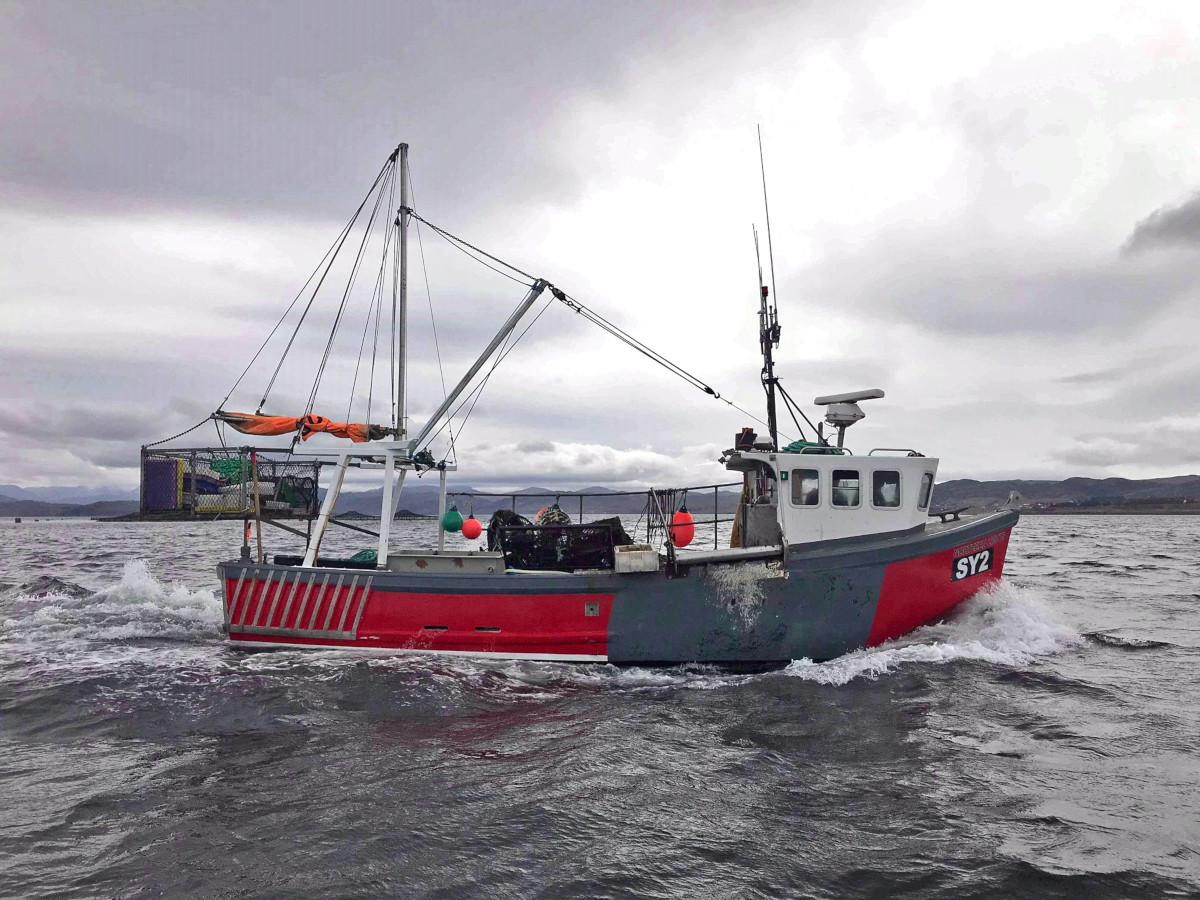 Twenty-year-old skipper Jamie MacDonald's Loch Ewe-based under-10m creel boat Northern Lights SY 2. (Jamie MacDonald)