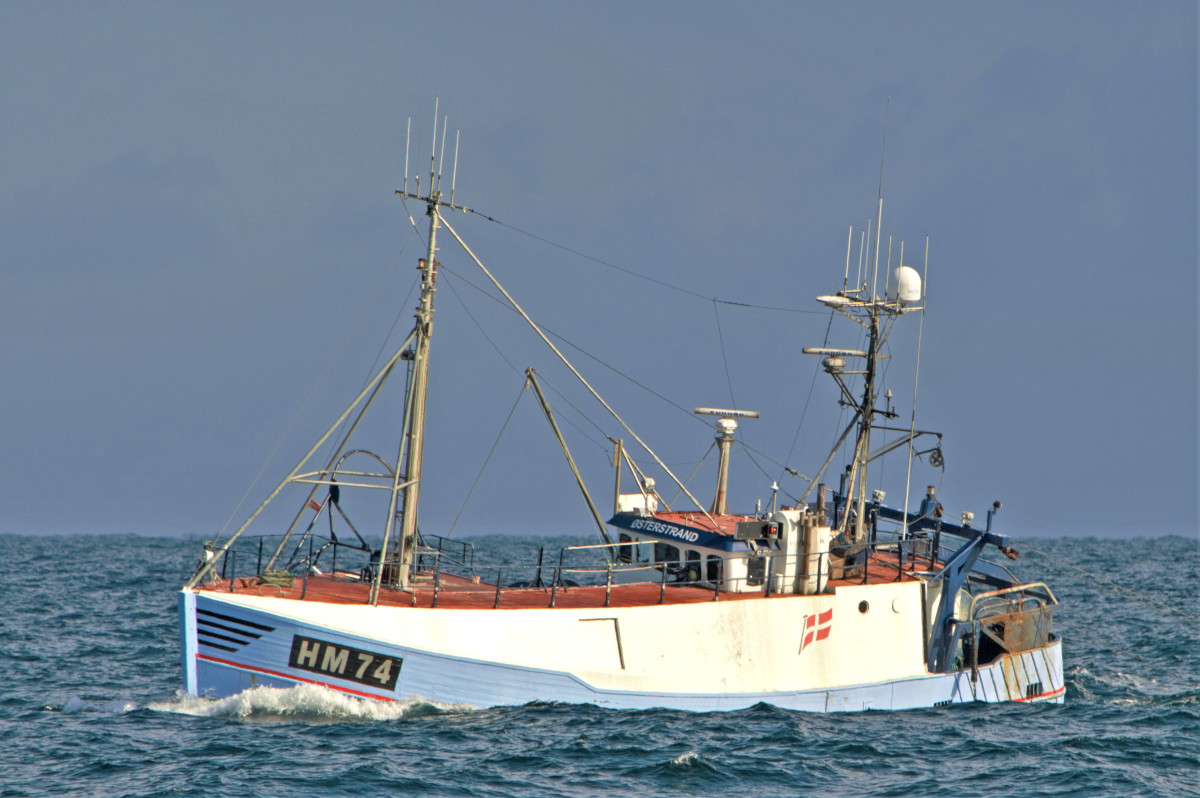 The traditional wooden-hulled Danish trawler Østerstrand HM 74…
