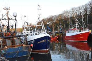 … kept local and visiting prawn trawlers in Eyemouth harbour, and brought the opportunity for a New Year photograph.