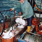… on which he spent over two decades working in the under-10m fleet.