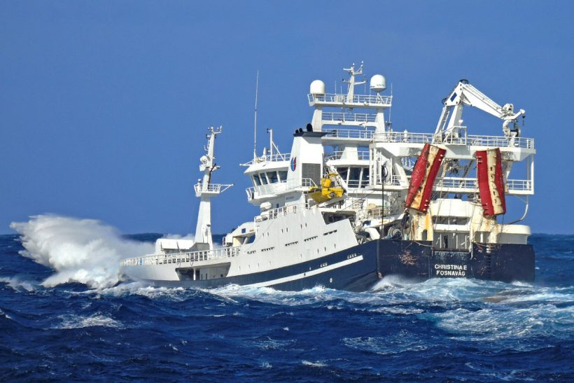 International fleet fishing blues west of Ireland (photos by Ryan Cordiner)