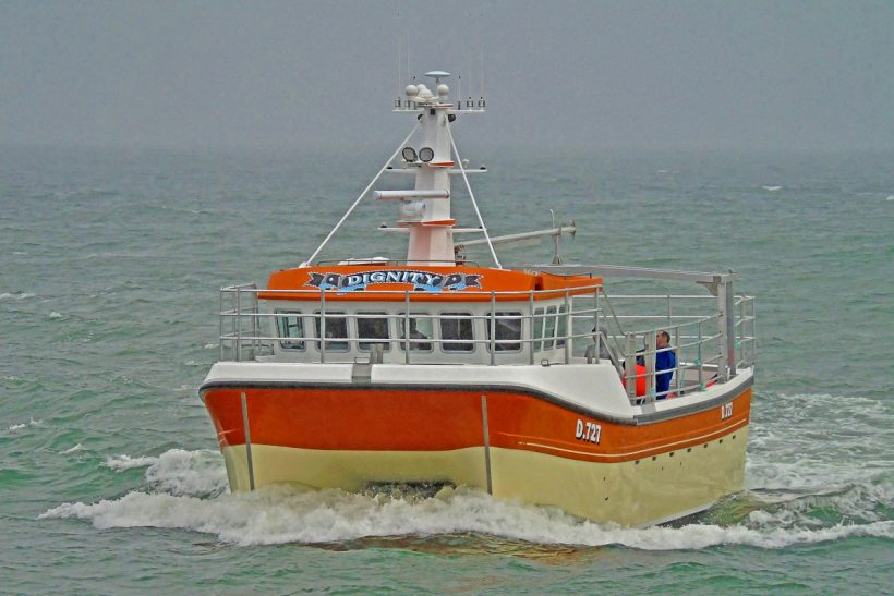 Boat of the Week: Dignity D 727