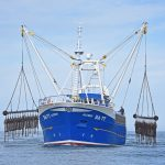 Alcedo lifting her scallop dredges for the first time, before running off to carry out fishing trials.