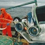 Hauling dogfish gill-nets onboard Dunan Star II…