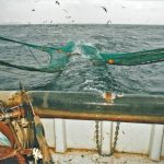 Preparing to shoot the Scotnet trawl from Dunan Star II.
