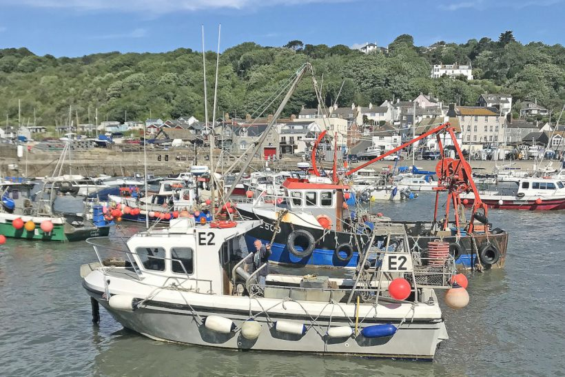 South coast fishing looks to the future